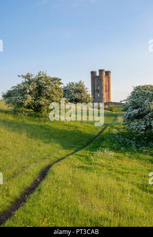 Broadway Tower and hawthorn / mayblossom in spring along the cotswold way. Broadway, Cotswolds, Worcestershire, England - Stock Photo