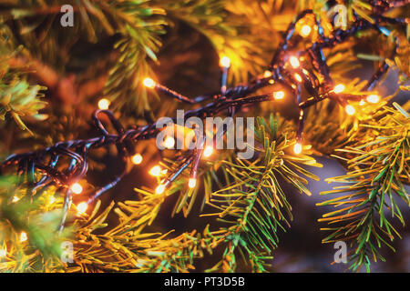 Christmas branch decorated with small Christmas lights. - Stock Photo