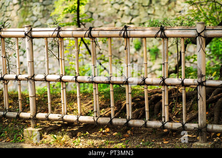 Natural fence. Fence of bamboo stalks. - Stock Photo
