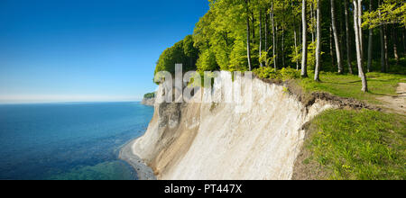 Germany, Mecklenburg-Vorpommern, Rügen Island, Jasmund National Park, view from the high shore to the chalk cliffs and the Baltic Sea, spring, fresh green - Stock Photo