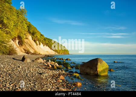 Germany, Mecklenburg-Western Pomerania, Rügen Island, Jasmund National Park, chalk cliffs in the morning light, boulders on a pebble beach - Stock Photo