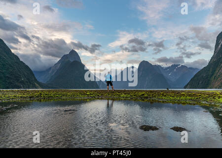 Man admiring Milford Sound with low tide, Fiordland NP, Southland district, Southland region, South Island, New Zealand, - Stock Photo