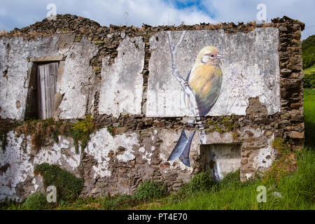 Flores Island, Portugal. July 28, 2018. Graffiti representing a bird on a wall in Santa Cruz das Flores - Stock Photo