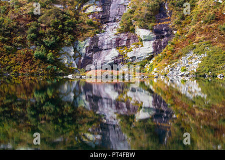 Awesome plants and rocks reflection on lake in a stunning morning - Stock Photo