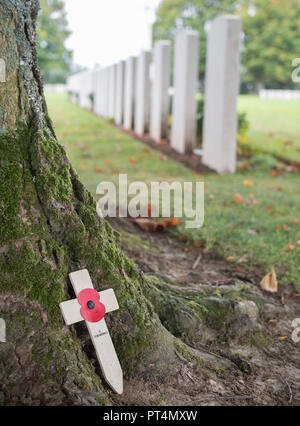 Bayeux British war cemetery. A cross with poppy leans against a tree, with graves visible in background. - Stock Photo