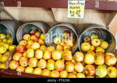 Sarasota Florida Pinecraft Pine Craft Amish community Yoder's Fresh Market shopping food produce honey crisp apples display sale - Stock Photo