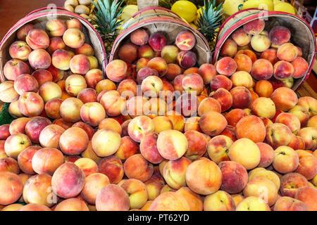 Sarasota Florida Pinecraft Pine Craft Amish community Yoder's Fresh Market shopping food display sale peaches basket - Stock Photo