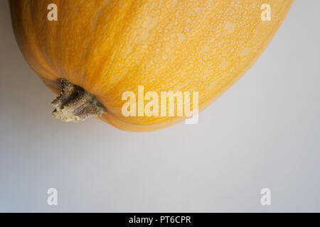 Part of ripe yellow pumpkin close up with a copy space - Stock Photo