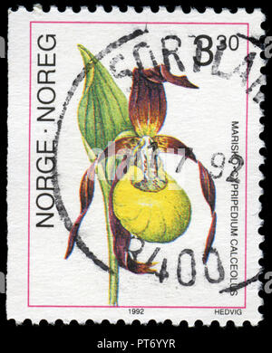 Postmarked stamp from Norway in the Orchids series issued in 1992 - Stock Photo