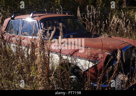 An old and rusty car in the forest - Stock Photo
