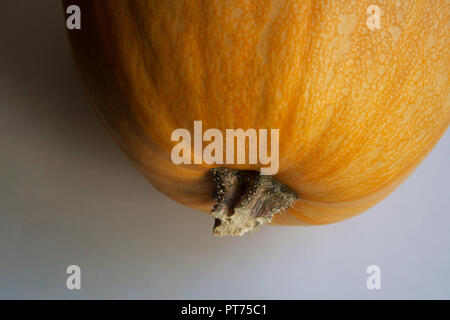 Part of halloween pumpkin on white background close up - Stock Photo