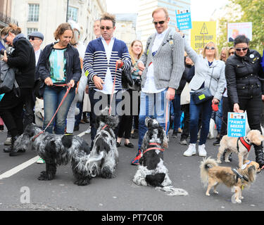 London, UK,  7th Oct 2018. Dogs and their owners protest in the 'Wooferendum' against Brexit along a route in Westminster via Trafalgar Square, Whitehall and Parliament Square. The march is thought to have attracted around 5000 dogs and owners, as well as many who have joined without animals, some in fancy dress and with European flags and placards. Wooferendum is organised by founder Daniel Elkan. Credit: Imageplotter News and Sports/Alamy Live News - Stock Photo