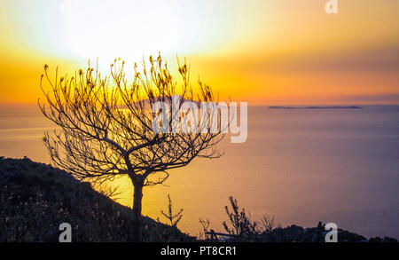Landscape of Sorrento's peninsula from mount San Costanzo, at Massa Lubrense, Sorrento at sunset - Stock Photo