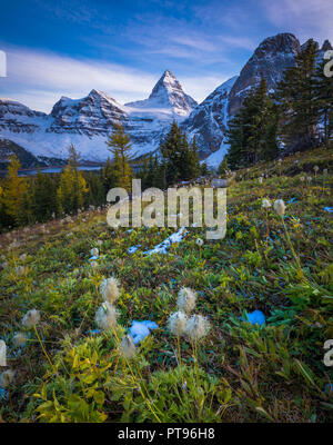 Mount Assiniboine, also known as Assiniboine Mountain, is a pyramidal peak mountain located on the Great Divide, on the British Columbia/Alberta borde - Stock Photo