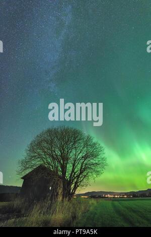 Aurora Borealis on the night sky above Selbu, middle Norway. - Stock Photo