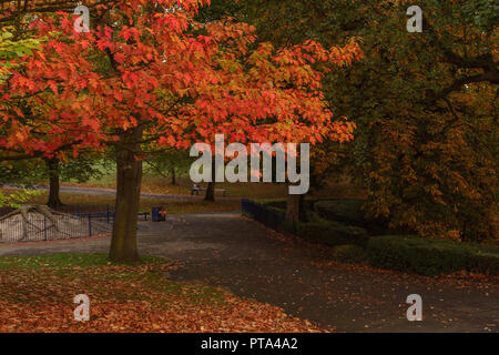 Wonderful Autumnal colours in Lister Park, Bradford, home of the amazing Cartwright Hall where a young David Hockney used to visit - Stock Photo