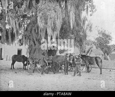 A Merchant from San Antonio, Texas, USA, c1900. Men with wagon and horses under a tree covered in Spanish moss. From Scenic Marvels of the New World edited by Prof. Geo.R. Cromwell. [C.N.Greig & Co., c1900] - Stock Photo