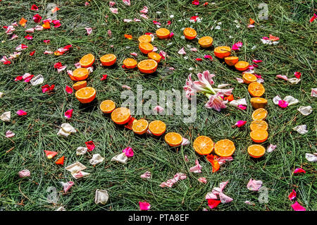 Heart shape of half oranges on pine needles scattered with rose petals. - Stock Photo