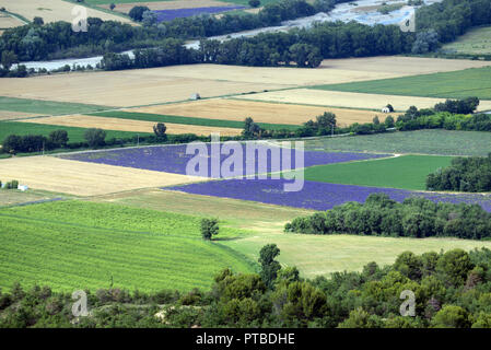 High-Angle or Aerial View of Wheat and Lavender Field Patterns in the Asse Valley Shot from the Valensole Plateau Provence France - Stock Photo