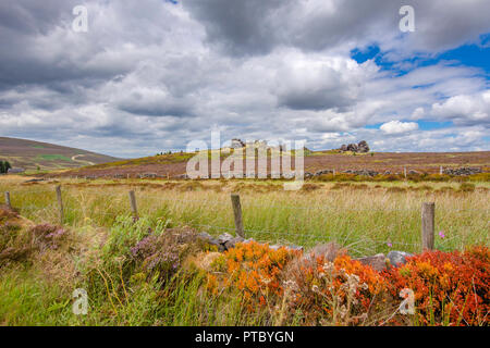Idyllic landscape of british countryside in late summer.Dramatic sky over fields covered with dry grasses and fence.Colourful scenery of rural uk.Moor - Stock Photo