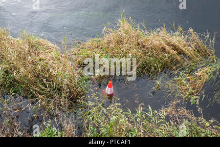 Traffic cone abandoned in the River Nith in the centre of Dumfries, Scotland. - Stock Photo