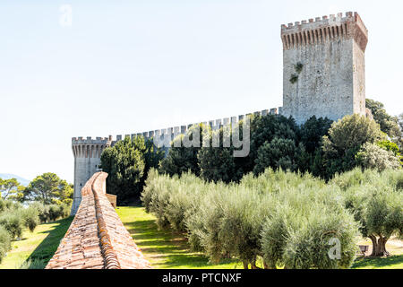 Castiglione del Lago medieval fortress fort tunnel, wall in Umbria, Italy, Rocca with Medievale o Rocca del Leone tower, olive trees in sunny summer d - Stock Photo