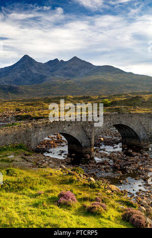Beyond The Bridge Stream