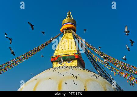 Boudhanath Stupa with a flock of pigeons flying in the sky, Kathmandu, Nepal - Stock Photo