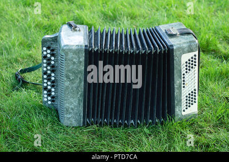 accordion on green grass in summer - Stock Photo