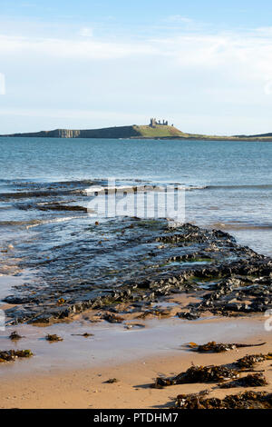 Dunstanburgh Castle seen across from Embleton Bay from the North, Northumberland, England, UK - Stock Photo