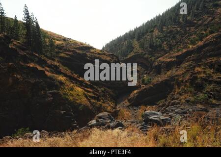 Santo Antao Island, Cape Verde - Jan 5 2016: arid landscape with hills and valleys and a small forest with grassy plains in the foreground - Stock Photo