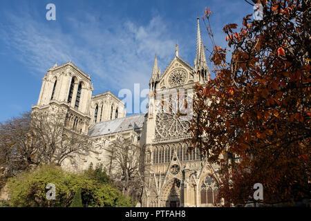 Paris, France - November 2017: Notre Dame de Paris Cathedral, most beautiful Cathedral in Parisl. France. - Stock Photo