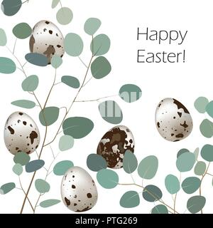 Happy Easter or spring greeting card. Quail eggs and leaf sprigs of eucalyptus background. Vector illustration - Stock Photo
