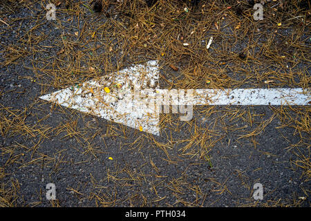 White arrow on the pavement under the needles ate - Stock Photo