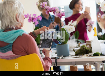 Active senior woman with digital tablet photographing orchid in flower arranging class - Stock Photo