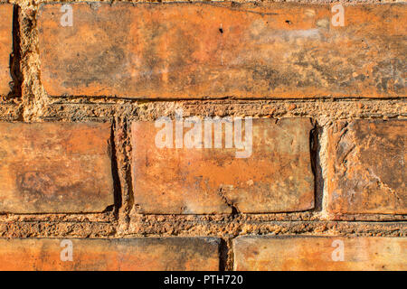Red Brickwall in romantic light - Stock Photo