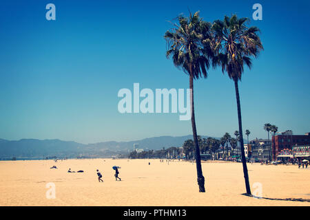 Beach with palm trees in Venice Beach - Stock Photo
