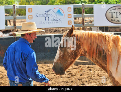 Tom Curtain the singing cowboy horse whispering  in his Outback Experience show in Katherine, Northern Territory, Australia - Stock Photo