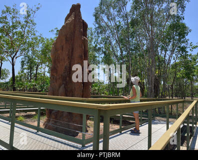 Tourist looks at Giant mound made by cathedral termites in the Litchfield National Park, Northern Territory, Australia - Stock Photo