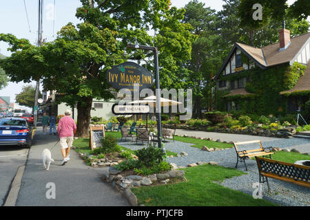 Man walking his dog, passing by the Ivy Manor Inn, Bar Harbor, Maine, USA. - Stock Photo