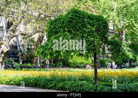 Whitehall Gardens, London, UK - Stock Photo