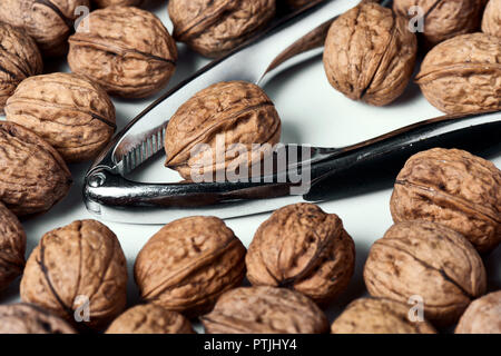 Walnuts in shell group on a white table with a metal nutcracker. - Stock Photo