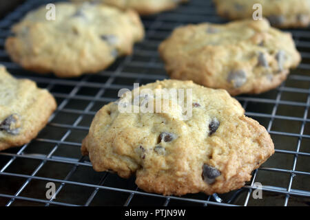 Chocolate Chip and Pecan Cookies on a Wire Cooling Rack - Stock Photo