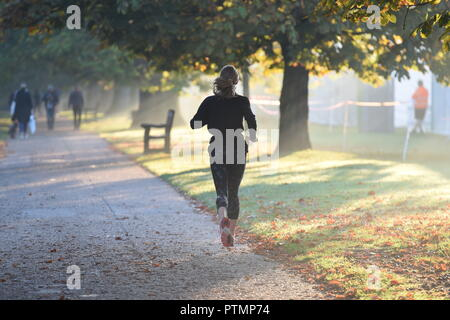 London, IK. 10th Oct 2018. UK Weather: Hot October weather in London's Hyde Park today  Picture Jeremy Selwyn Credit: Evening Standard Limited /Alamy Live News - Stock Photo