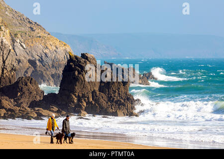 A couple walking their dogs together along the stunning Barrafundle Bay with waves crashing against the shoreline, Pembrokeshire, Wales - Stock Photo