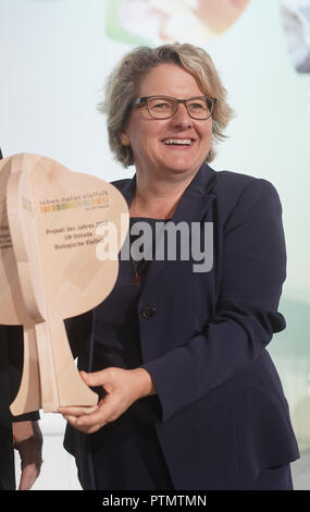 10 October 2018, Berlin: Federal Environment Minister Svenja Schulze (SPD) presents an environmental prize at the 'National Forum on Biological Diversity'. At the Forum she made proposals for an 'Insect Protection Action Programme'. Photo: Jörg Carstensen/dpa - Stock Photo