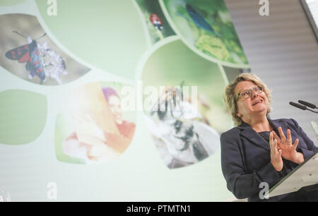 10 October 2018, Berlin: Federal Environment Minister Svenja Schulze (SPD) presents proposals for an 'Insect Protection Action Programme' at the 'National Biodiversity Forum'. Photo: Jörg Carstensen/dpa - Stock Photo
