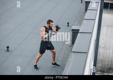 high angle view of boxer training on roof - Stock Photo