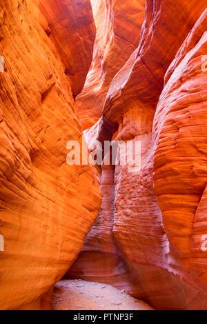 Peek a boo slot canyon in Utah - Stock Photo