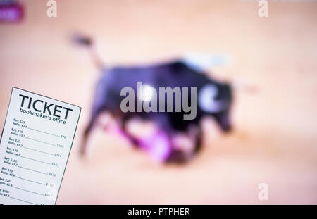 Bookmaker ticket on the background of TV on which show bullfight, sports betting, bookmaker - Stock Photo